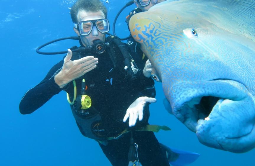 De oostkust van Australië: een tropische ontdekkingstocht