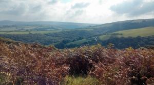 Het landschap van Exmoor